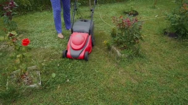 Young woman is mowing lawn with lawn mower in her backyard. Mowing grass in the garden.