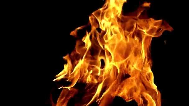 Hořící jasný oheň na černém pozadí v noci. Zpomalený záblesk ohně se pohybuje ve tmě. Detailní záběr