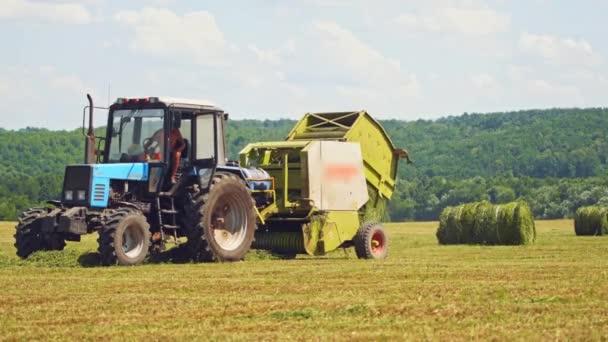 Traktor tlačí trávu do kulatých balíků na poli v létě. Zemědělský stroj vyrábí lisovaný svazek zelené trávy venku.