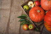 A view from above on an autumn composition. Bright vegetables and colorful ripe fruits full of vitamins in a box on a rustic cloth background. Organic ingredients. Autumn harvest. Copy space.