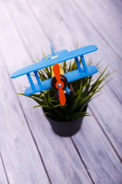 toy airplane on the flowerpot