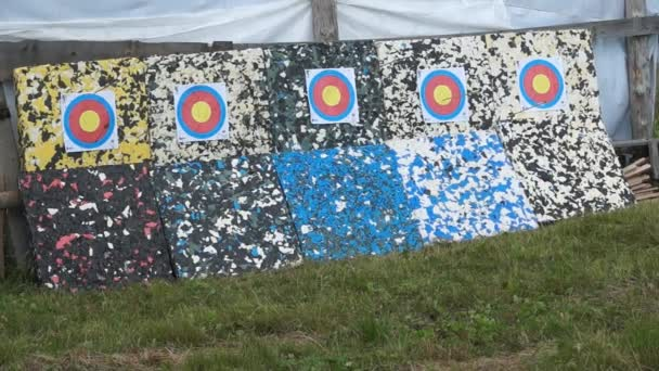 An arrows hitting the target