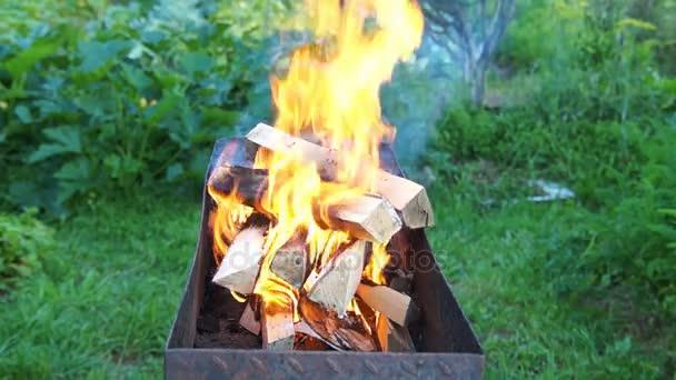 Březové dřevo hoří
