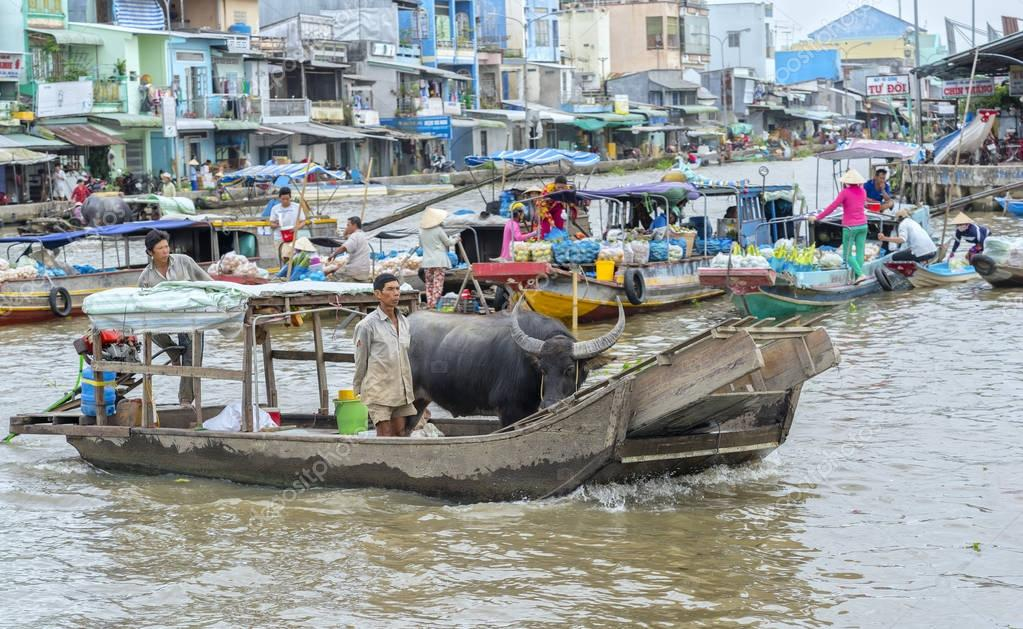 Farmers shipping buffalo trade in floating market,