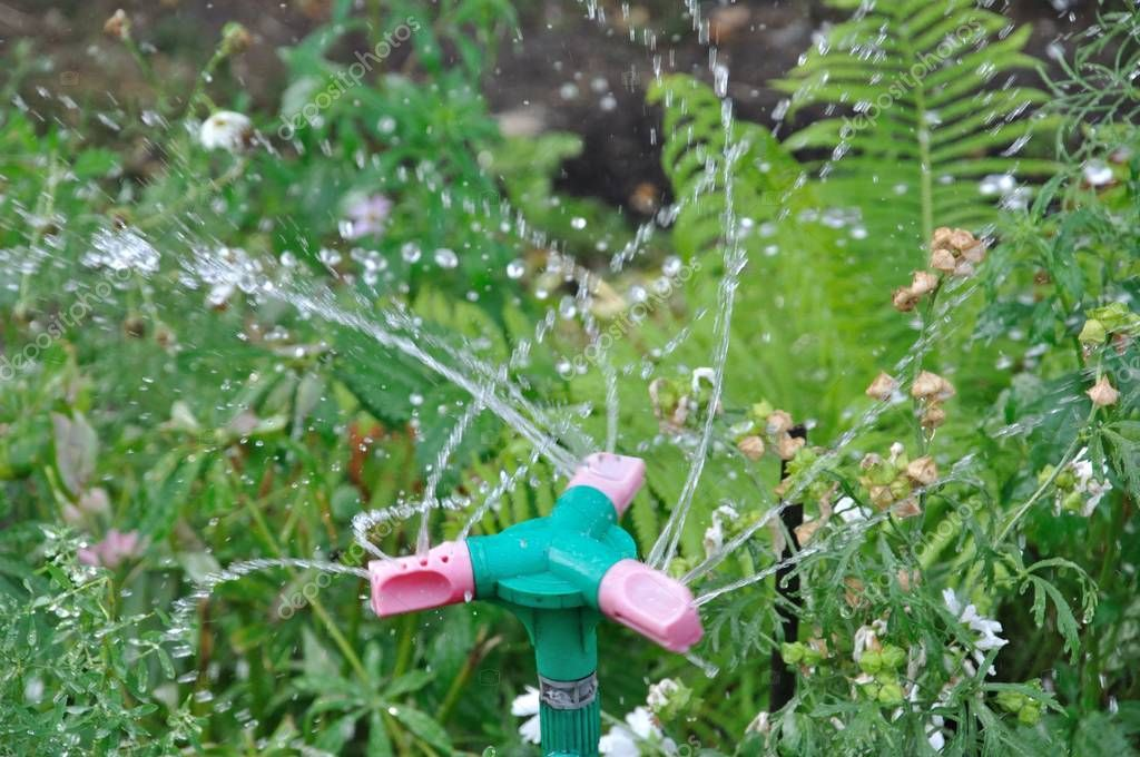 Automatic garden sprinkler system watering the lawn on a background of green grass, close-up