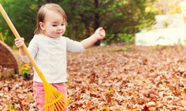 Toddler girl holding rake at hand
