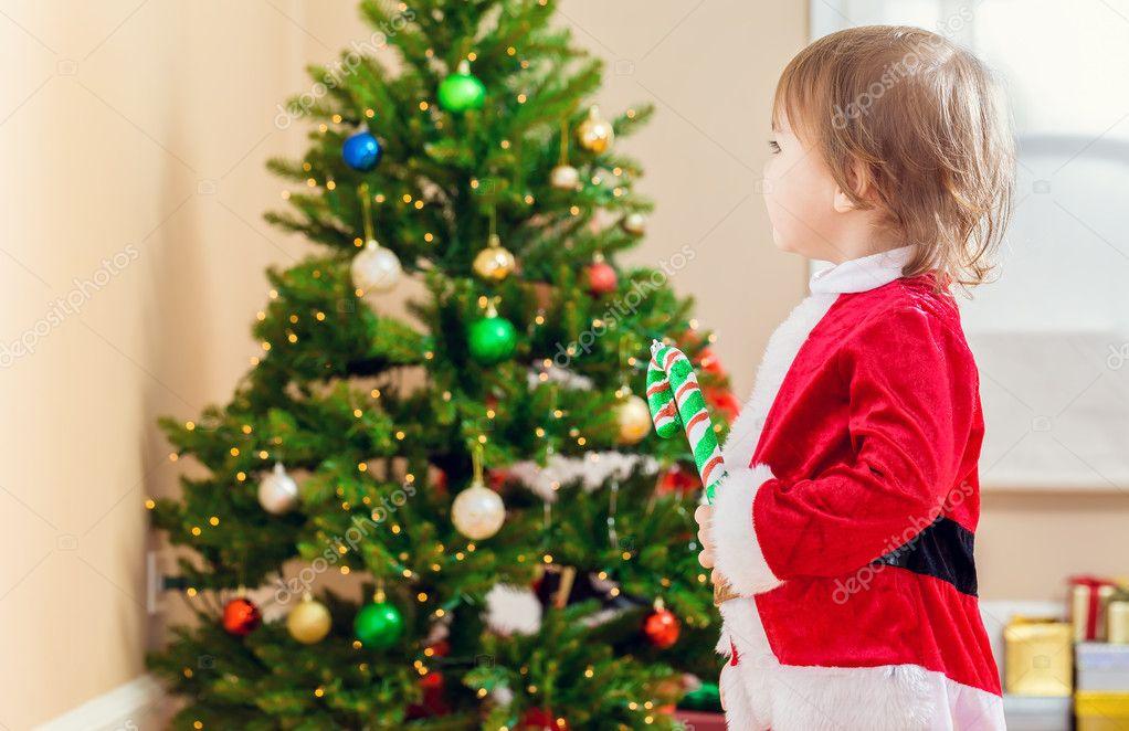 chica de niño mirando el árbol de Navidad — Fotos de Stock ...