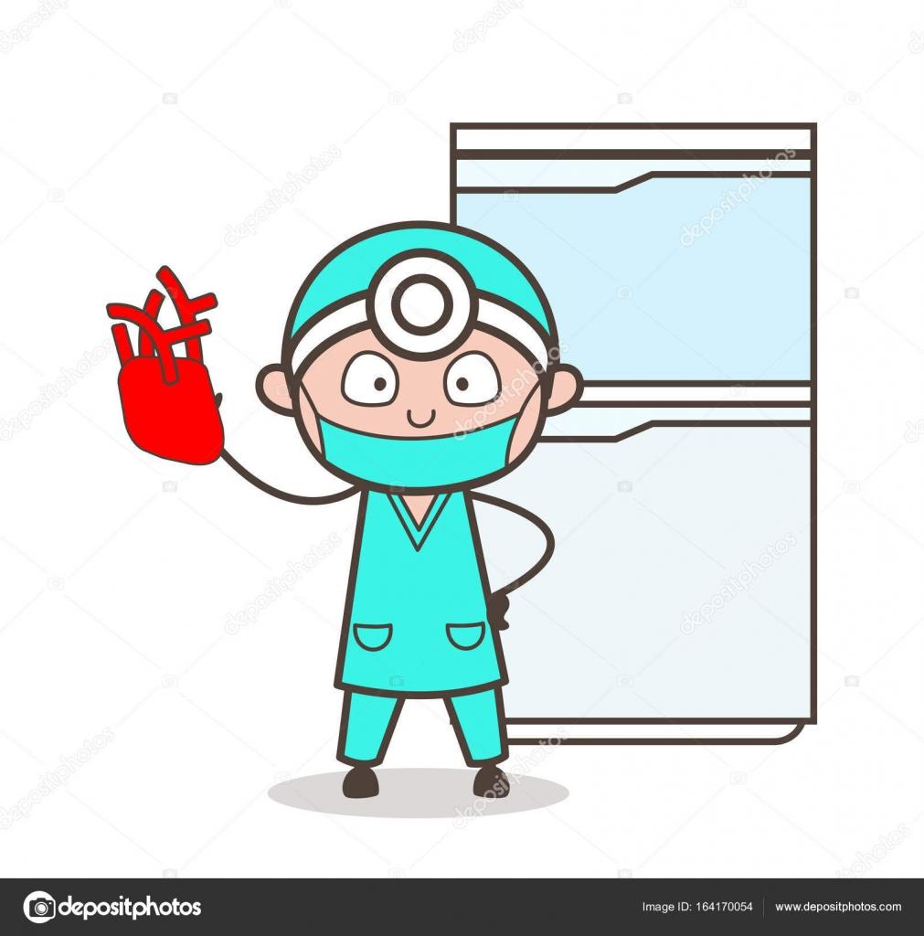 Cardiólogo de dibujos animados que muestra un Vector de corazón ...