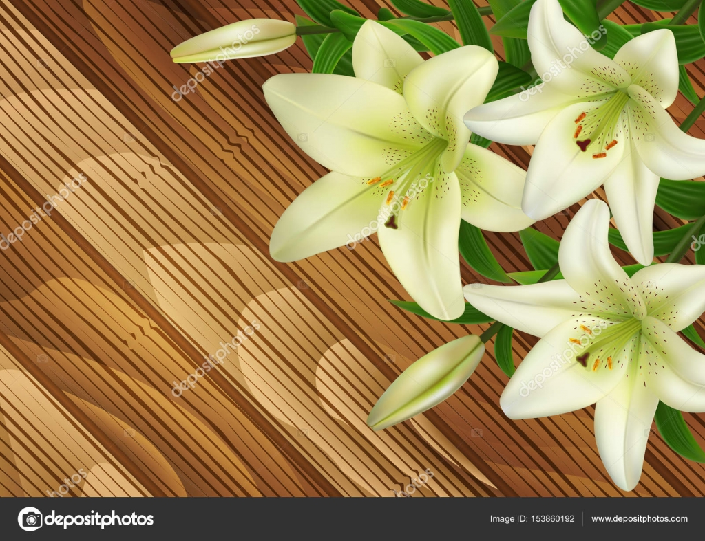 White Lily Flowers On Wood Background Stock Vector Angeliina