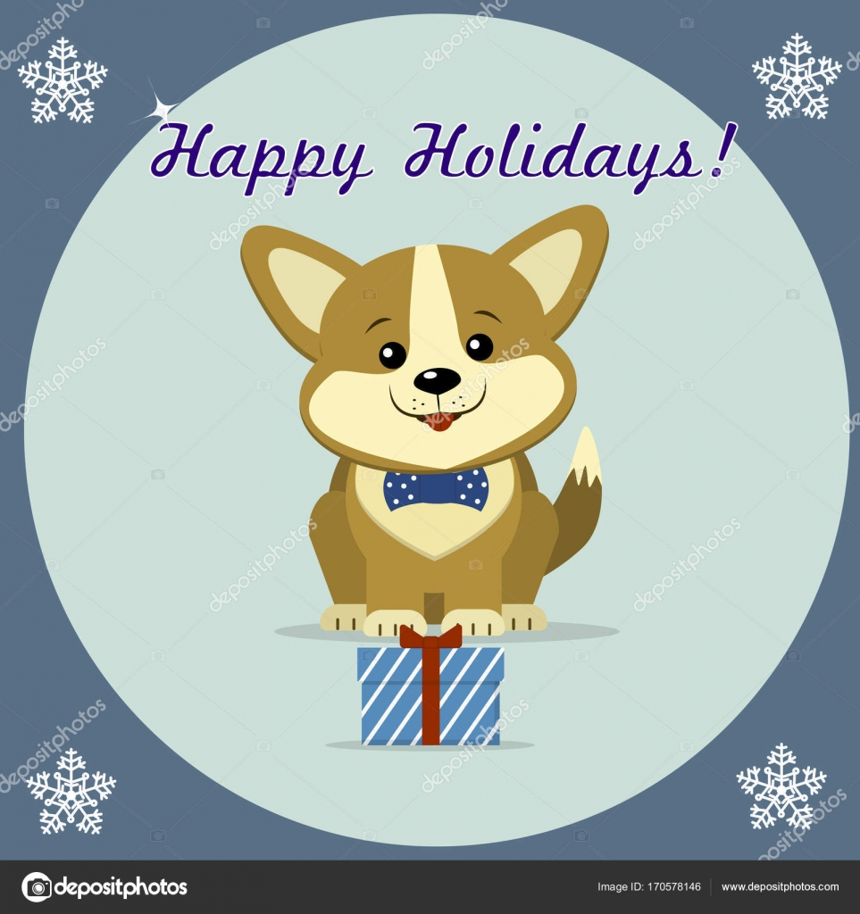 Christmas card with cute dog Corgi in a bow tie, sits next to a gift ...
