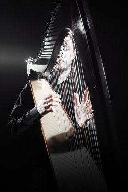 Harp player. Classical musician