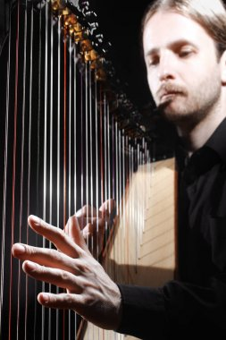 Harp player. Harpist hands playing Irish harp strings