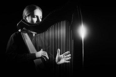 Harp player. Classical musician Irish harpist