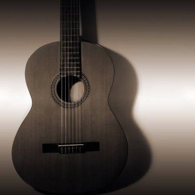Acoustic guitar. Classical guitar spanish