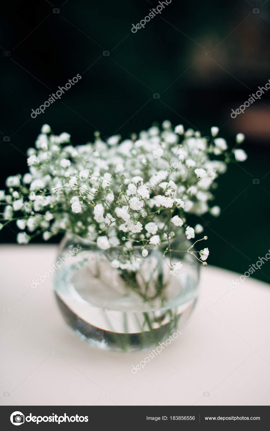 Name Of Small White Flowers In Bouquets - Flowers Healthy