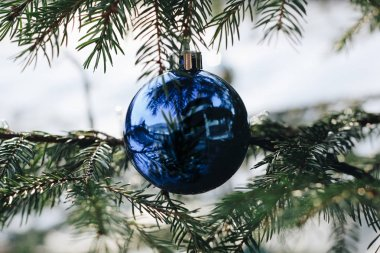 close up of a decoration on a christmas tree - outdoor.