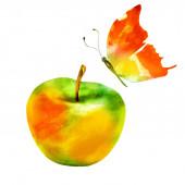 Jablko akvarel a motýl na bílém
