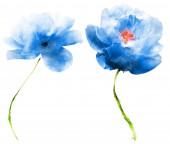 Akvarelové květiny, izolované na bílém pozadí