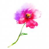 Akvarel květiny izolované na bílém. Silueta