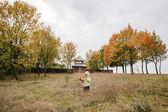 Az őszi park.with egy csokor leaves.castle.f kislány