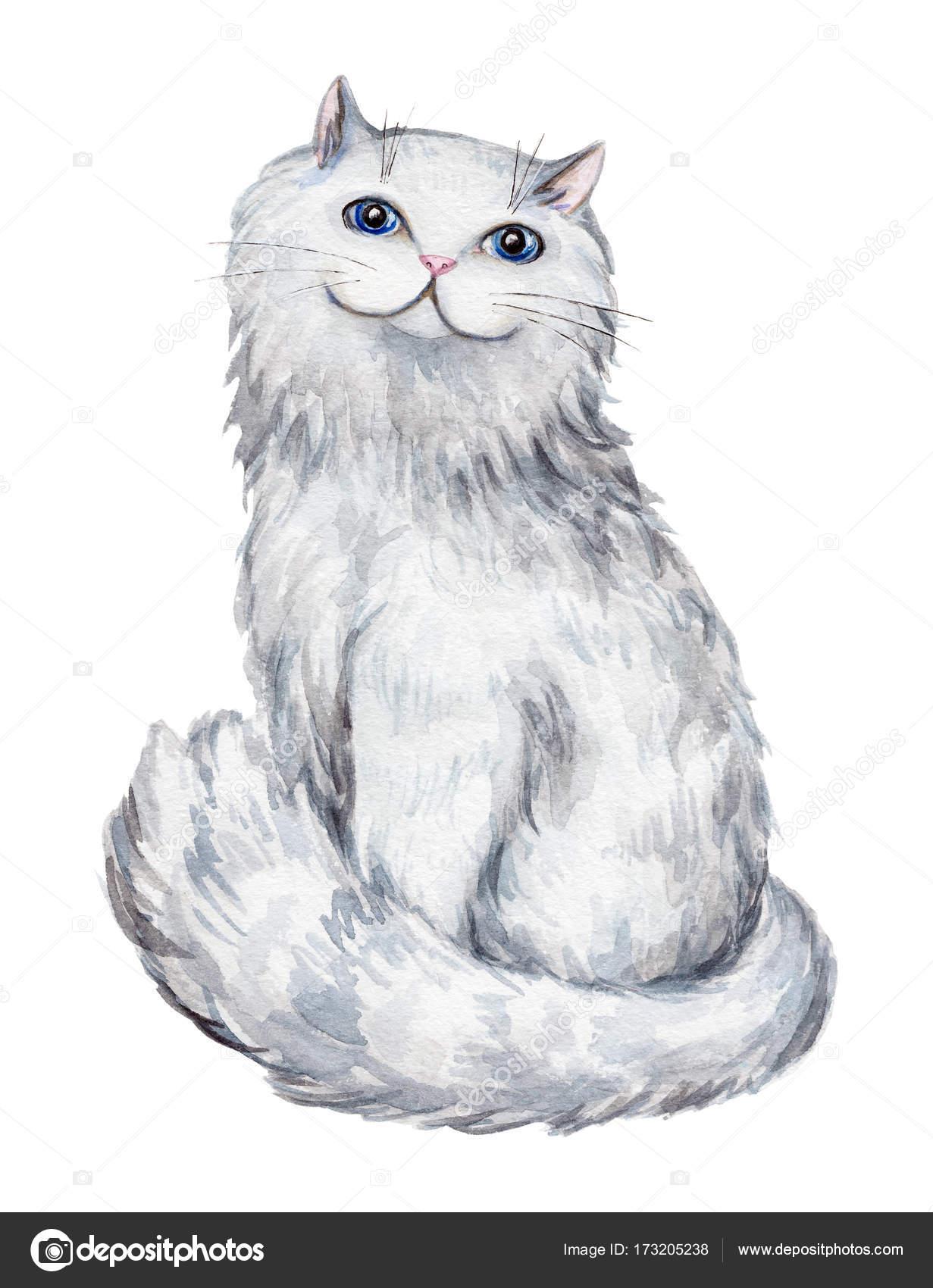 horké bílé kočička fotky obrázky velké černé monstrum kohouty