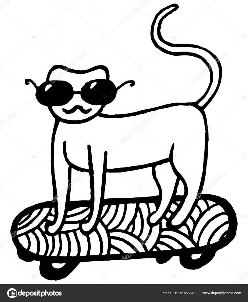 Kaykay üzerinde Kedi Boyama Sayfası Stok Vektör Fesleen 161456648