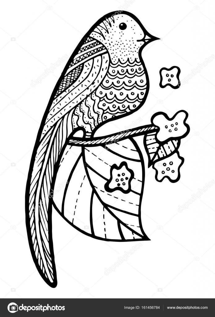 Rama con hojas para colorear | Pájaro en rama con hojas y flores ...