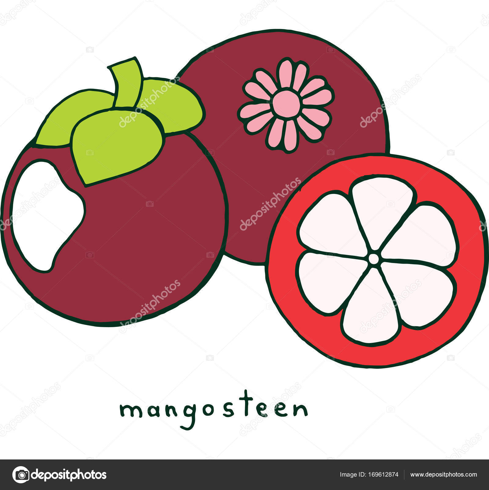 Coloriage Fruits Tropicaux.Coloriage Fruit De Mangoustan Doodle Colore Graphique Vectoriel Un