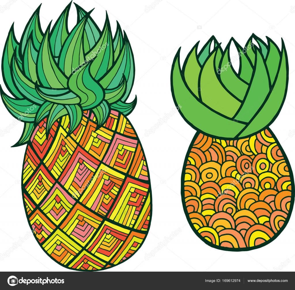 Ananas Boyama Sayfası Grafik Vektör Renkli Doodle Için Sanat Stok