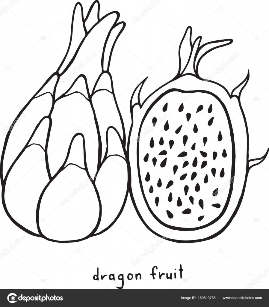 Coloriage Fruits Tropicaux.Coloriage De Dragon Fruit Vecteur Graphique Noir Et Blanc Art F