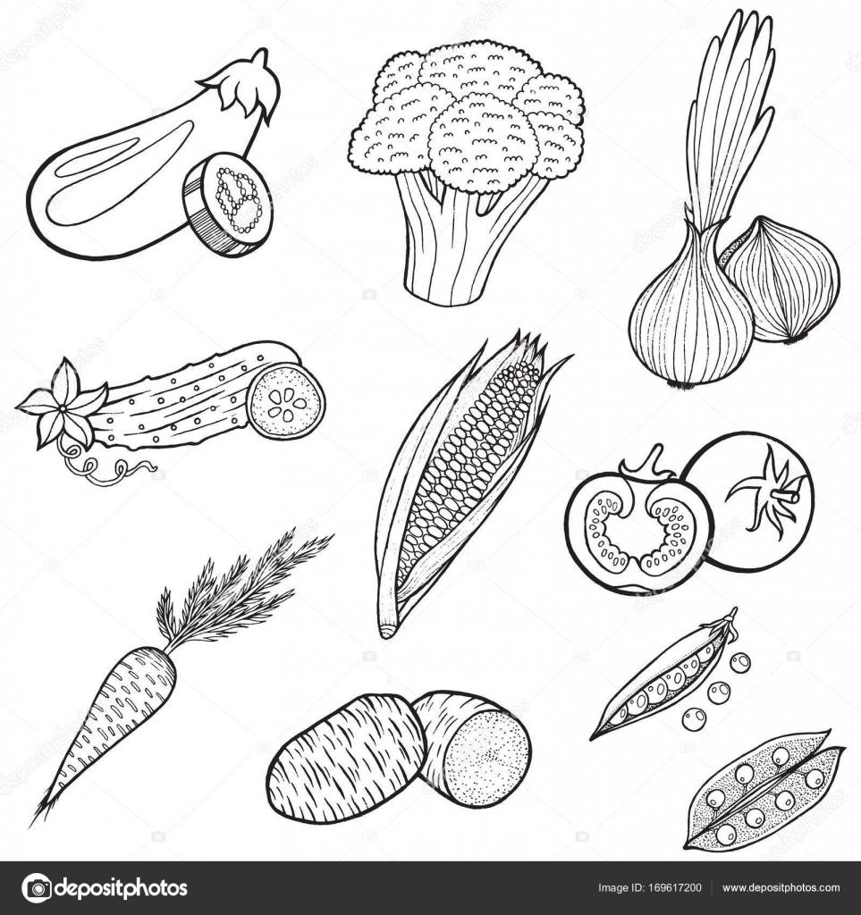 Sebze Gıda Koleksiyonu Kitap Yetişkin Renklendirme Sayfaları Bir