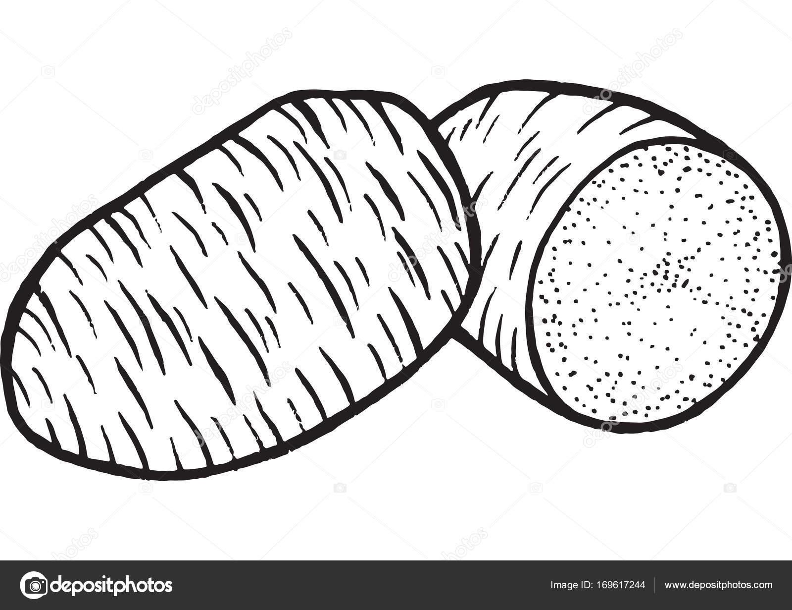 Sayfa Boyama Patates çizilen Illüstrasyon El Stok Vektör Fesleen