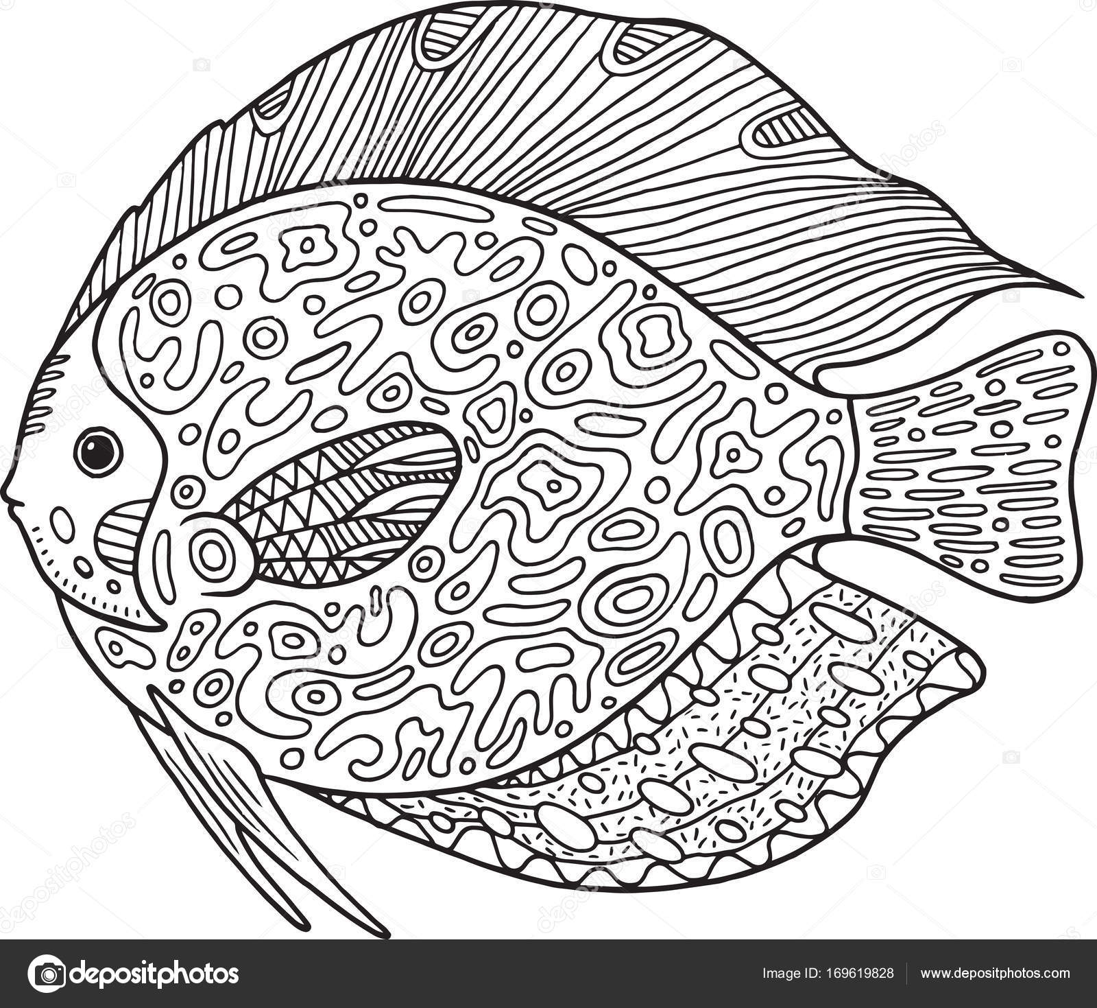 Doodle zentangle fish coloring page with animal for adults stock illustration