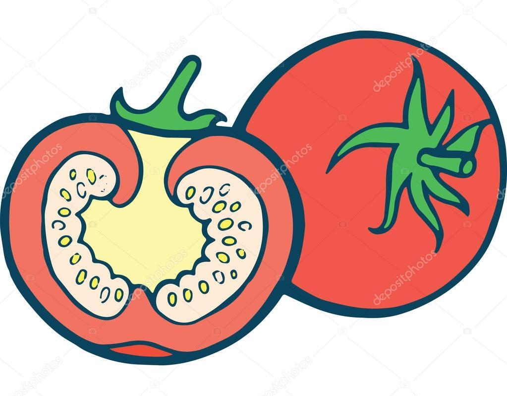 tomaat kleurplaat pagina getrokken illustratie voor