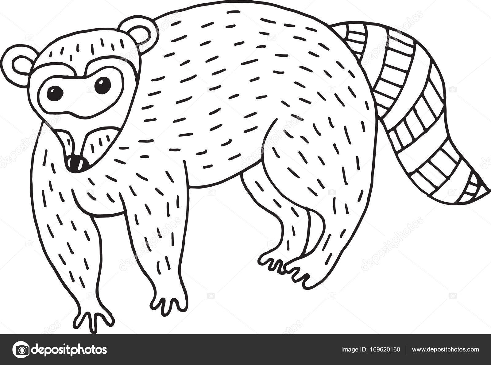 Ilustración simple de bosque animal mapache doodle dibujos animados ...
