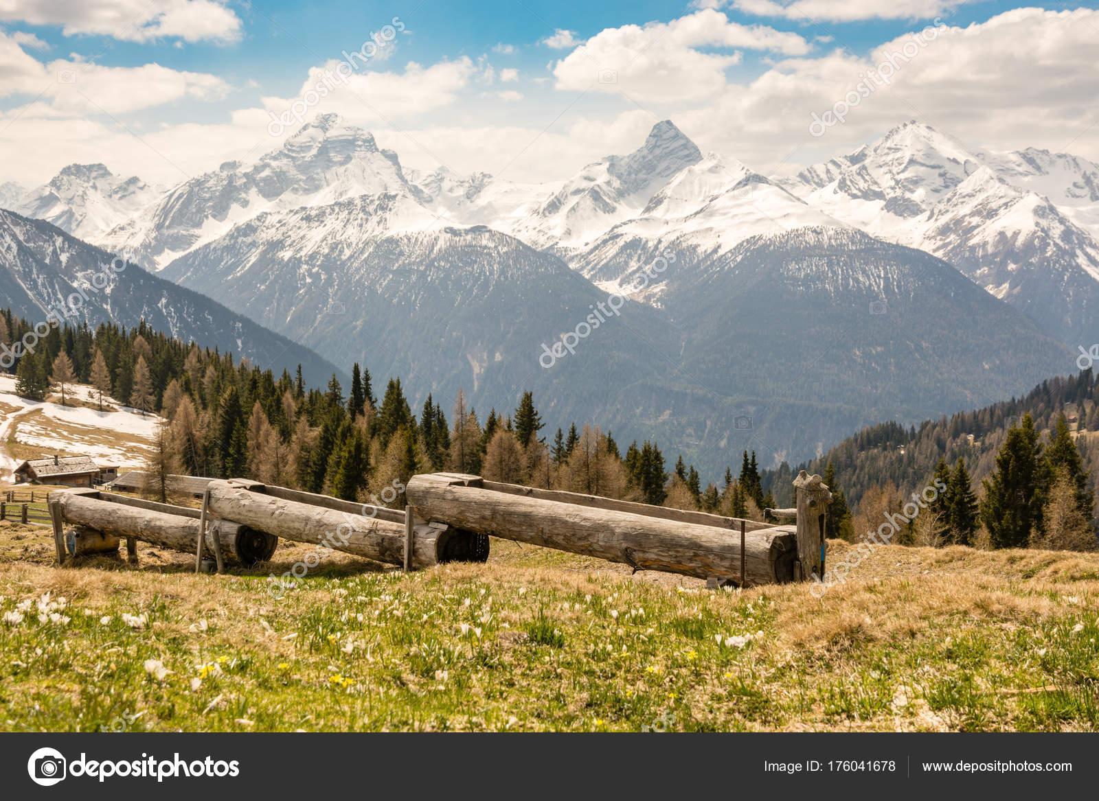 Hölzerne Tränke für die Kühe in Schweizer Alpen — Stockfoto ...
