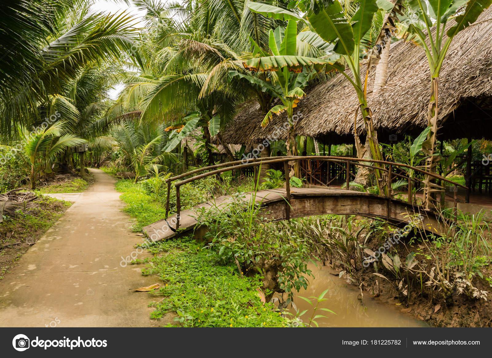 Small vietnamese village in jungle around Mekong delta — Stock Photo ...
