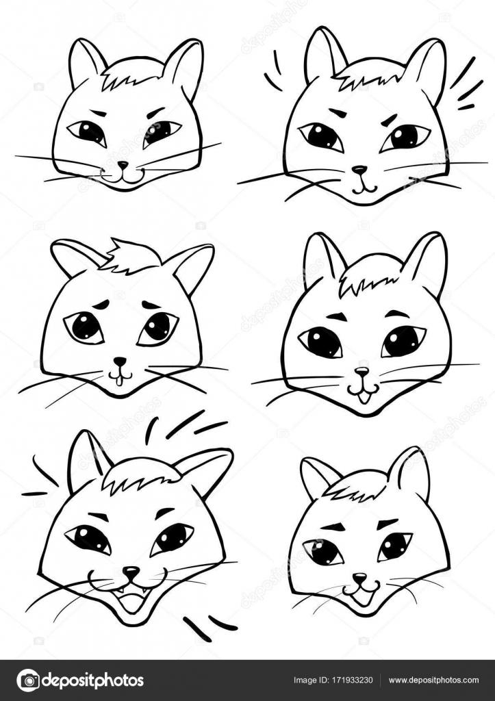 Imágenes Caras De Gatos Para Pintar Caras De Dibujos