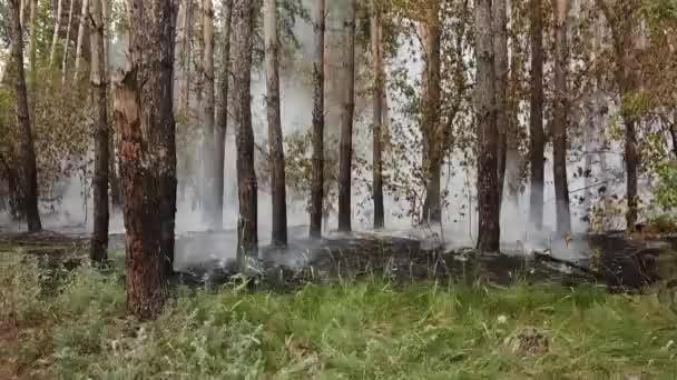 Lauffeuer aus dem Hubschrauber in Russland