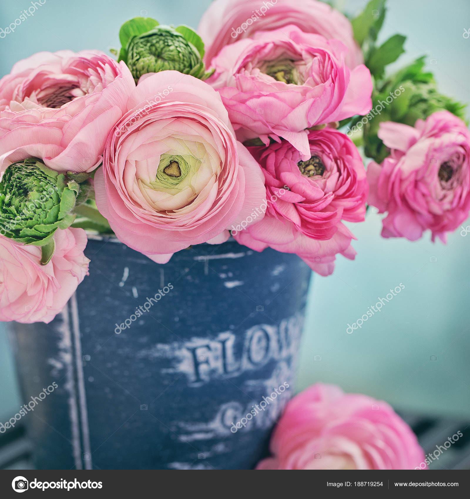 Close Floral Composition Pink Ranunculus Flowers Vase Beautiful