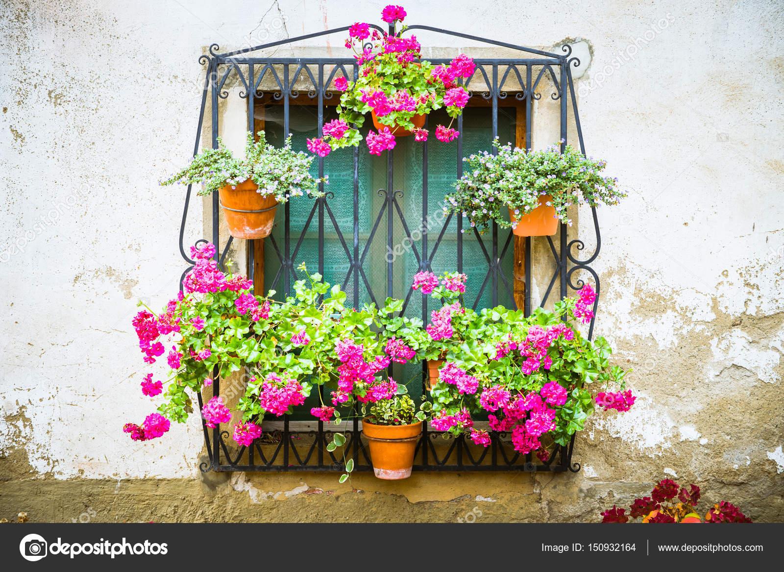 vecchia strada con vasi di fiori foto stock pabkov