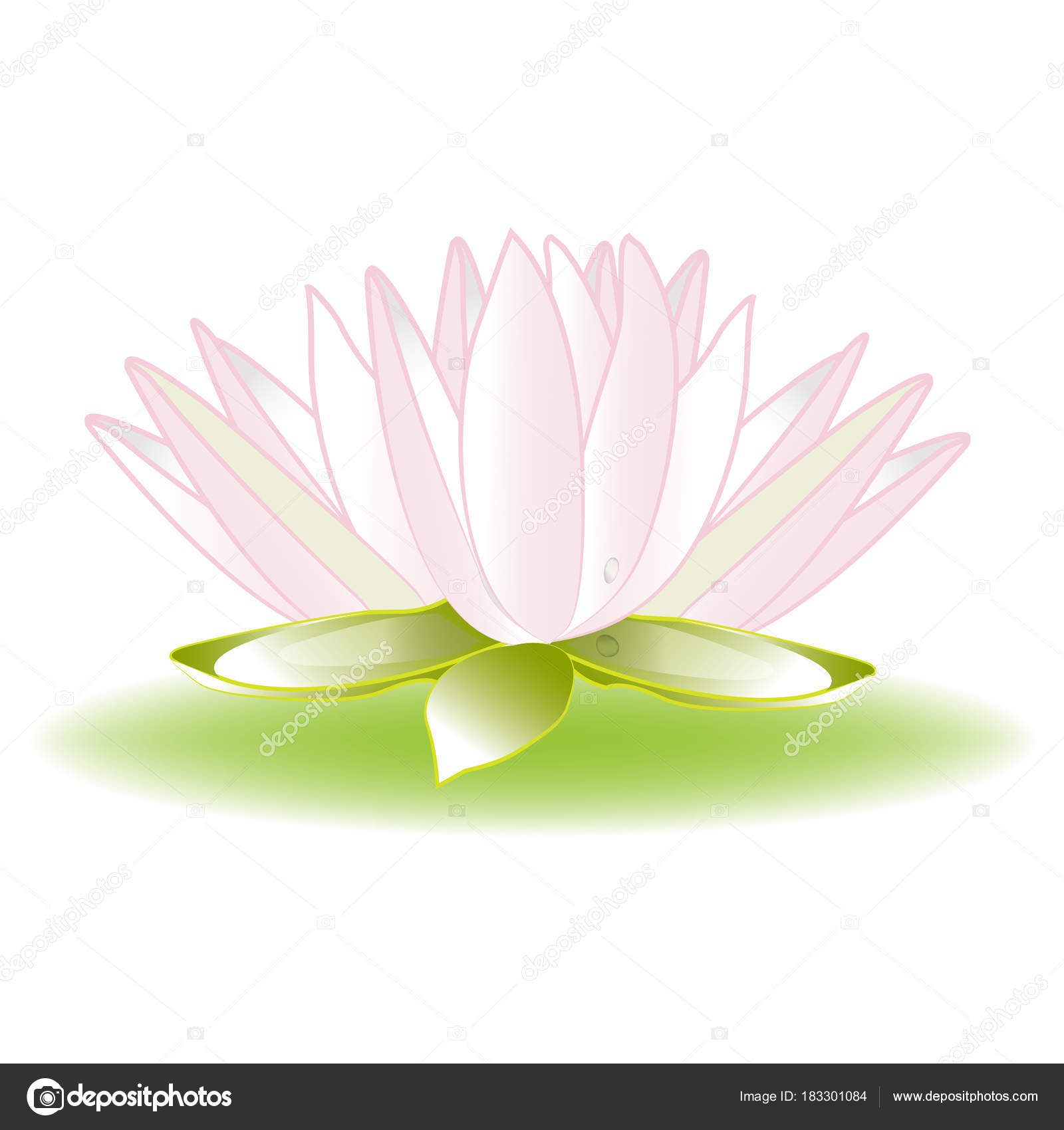 lotus flower logo vector image template background stock vector