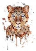 Stílusos leopard poszter