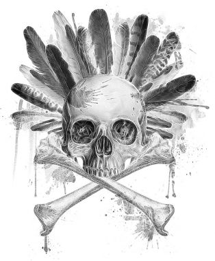 Skulll with indian headdress