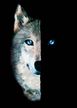 wolf print for t-shirt