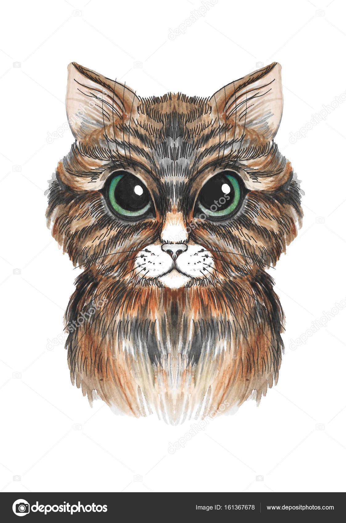 Süße Katze in Aquarell gemalt — Stockfoto © YuliaRey #161367678