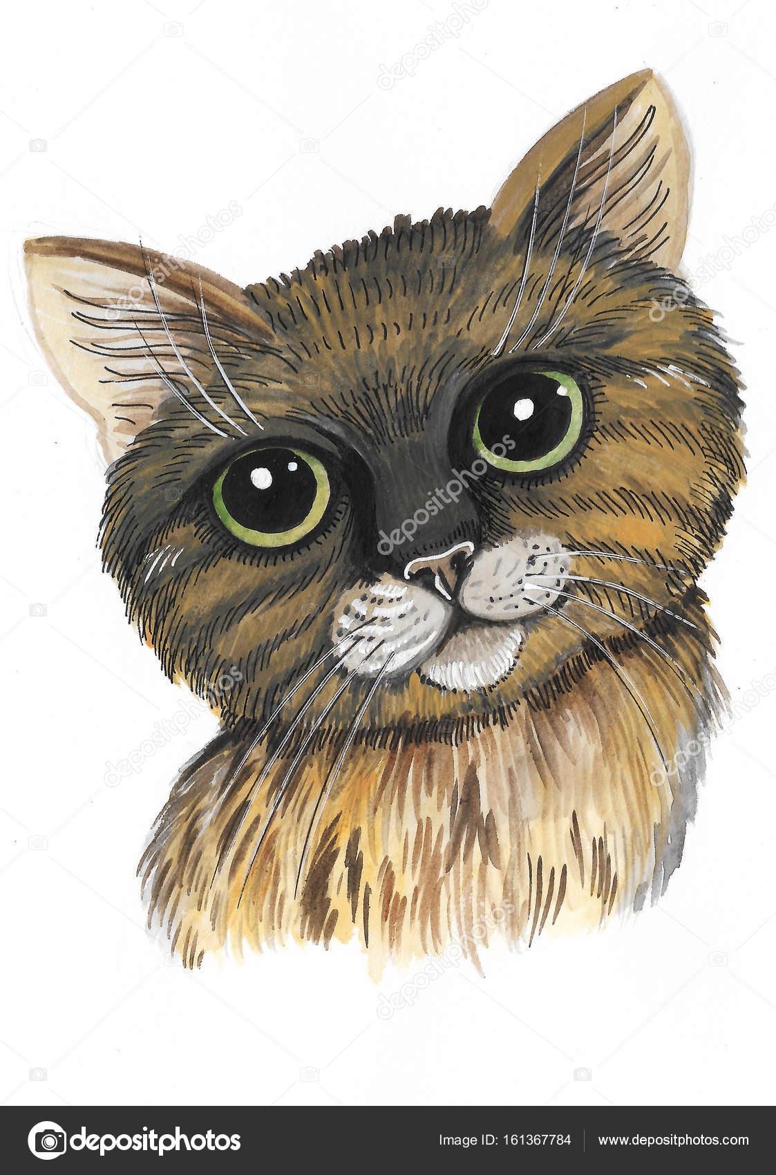 Süße Katze in Aquarell gemalt — Stockfoto © YuliaRey #161367784