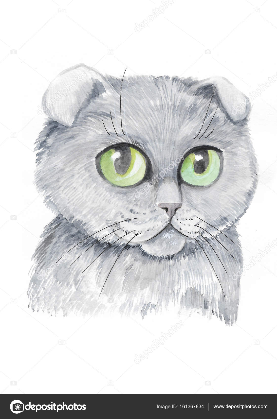 Süße Katze in Aquarell gemalt — Stockfoto © YuliaRey #161367834