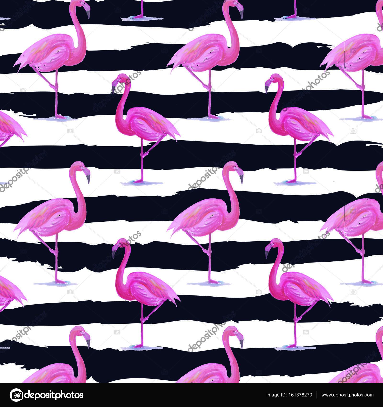 Flamingo wz³r zebra tło — Zdjęcie stockowe © Refiyekara