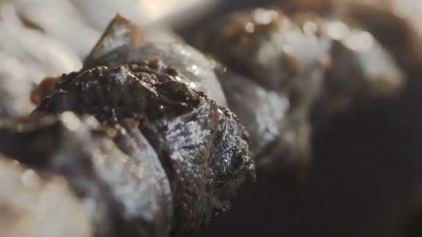Closeup. Vaření na kovový špíz grilovaný kebab. Vařené pečené maso na grilu. Gril na dřevěné uhlí a plamen, piknik